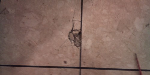damaged tile repairs