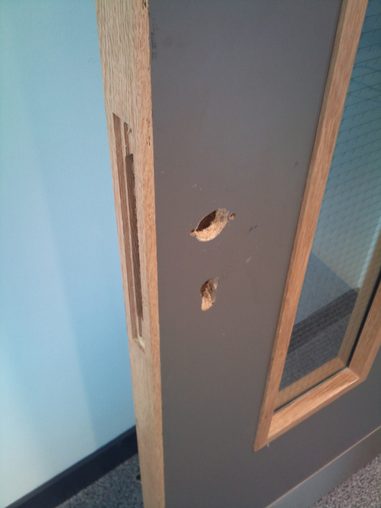 scratched chipped dented wooden door repairs laminated door repairs